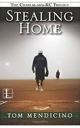 stelaing home book cover
